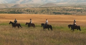 Ambitious horse center is in the works for southeastern Idaho
