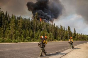 photo of forest service fire